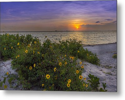 Floral Shore Metal Print by Marvin Spates
