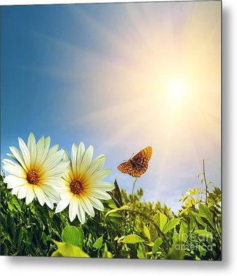 Floral Spring Metal Print by Carlos Caetano