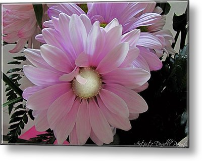 Florescence In Lavender Pink Metal Print by Danielle  Parent