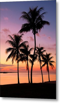 Florida Breeze Metal Print by Chad Dutson