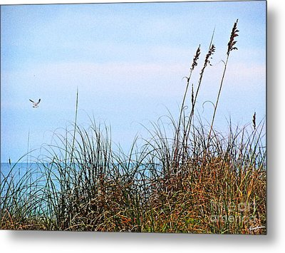 Metal Print featuring the photograph Florida Dunes by Melissa Sherbon