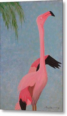 Florida Flamingo Metal Print by Tim Townsend