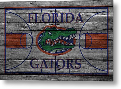 Florida Gators Metal Print by Joe Hamilton