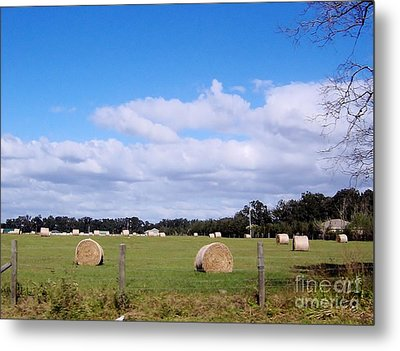 Metal Print featuring the photograph Florida Hay Rolls by D Hackett