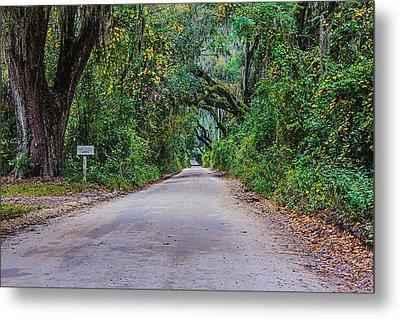Florida Road Metal Print by Tom Culver