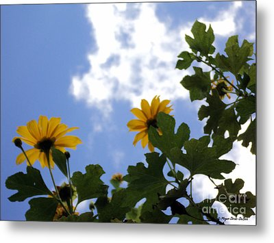 Metal Print featuring the photograph Florida Sunshine1 by Megan Dirsa-DuBois