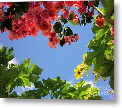 Metal Print featuring the photograph Florida Sunshine2 by Megan Dirsa-DuBois