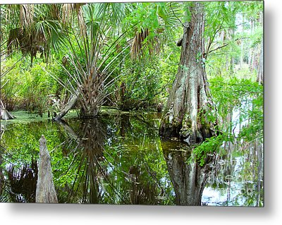 Florida Wetland Metal Print