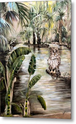 Florida's Barred Owl Metal Print