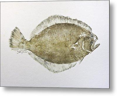 Flounder Metal Print by Nancy Gorr