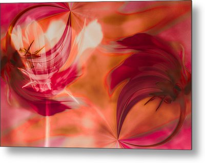 Metal Print featuring the photograph Flow by Jacqui Boonstra