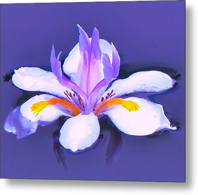 Flower Angel Metal Print