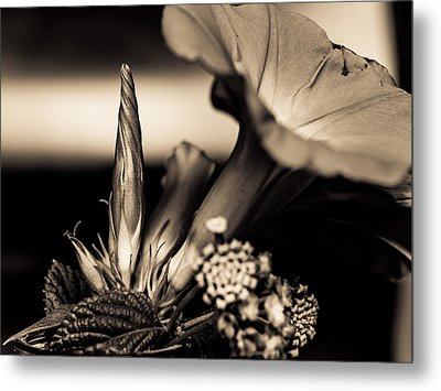 Flower Beauty II Metal Print