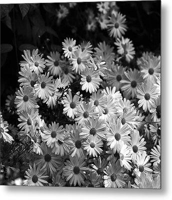 Metal Print featuring the photograph Flower Bouquet by Silke Brubaker