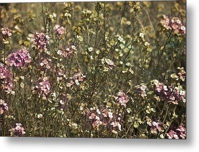 Flower Field Metal Print by Svetlana Sewell