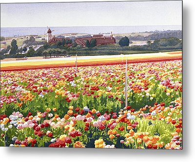 Flower Fields In Carlsbad 1992 Metal Print by Mary Helmreich