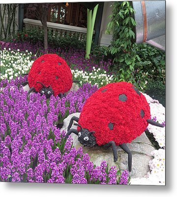 Metal Print featuring the photograph Flower Garden Ladybug Purple White I by Navin Joshi