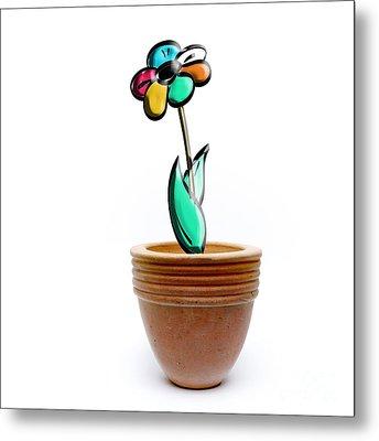 Flower In A Pot. Concept Metal Print