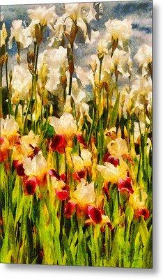 Flower - Iris - Mildred Presby 1923 Metal Print by Mike Savad