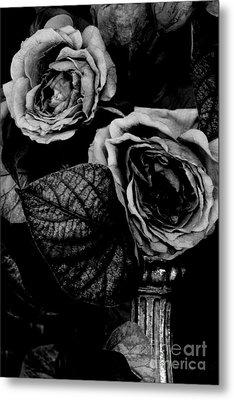 Flower Is Woman Metal Print by Steven Macanka