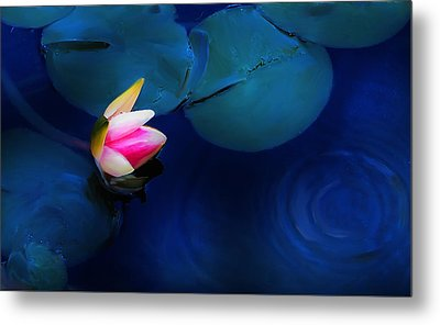 Flower On The Lily Metal Print by Cary Shapiro
