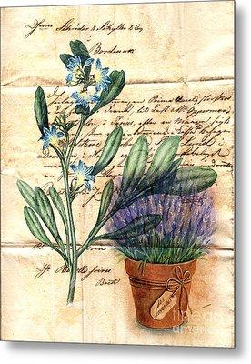 Flower Pot And Vintage Plant On Paper Metal Print