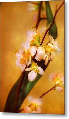 Flower - Sakura - A Touch Of Spring Metal Print by Mike Savad