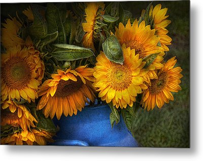 Flower - Sunflower - The Suns Have Risen  Metal Print by Mike Savad
