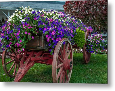 Flower Wagon Metal Print by Gene Sherrill