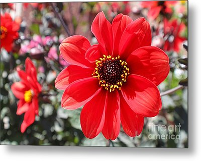 Metal Print featuring the photograph Flower1 by Theresa Ramos-DuVon