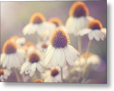 Flowerchild Metal Print by Amy Tyler