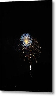 Flowering Burst Metal Print