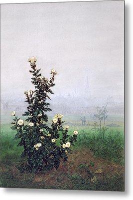 Flowering Chrysanthemum With Worker Metal Print by Leon Bonvin