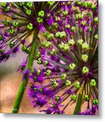 Flowering Onion Metal Print