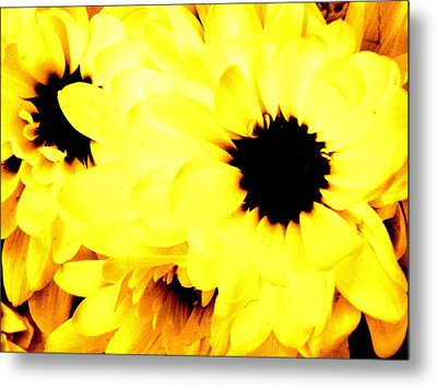 Flowers 2 Metal Print by Jason Michael Roust