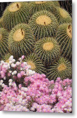 Flowers And Cacti Metal Print