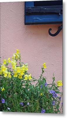 Flowers And Window Frame Metal Print by Bruce Gourley
