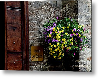 Metal Print featuring the photograph Flowers - Assisi by Theresa Ramos-DuVon
