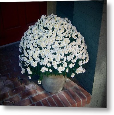 Flowers At The Door Metal Print by Brian Wallace