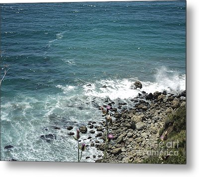 Metal Print featuring the photograph Flowers By The Seashore by Carla Carson