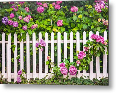 Flowers - Floral - White Picket Fence Metal Print by Gary Heller