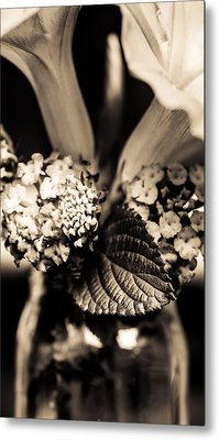 Flowers In A Jar Metal Print by Marco Oliveira