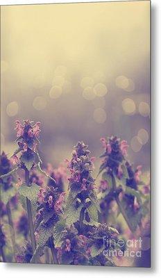 Flowers Metal Print by Jelena Jovanovic