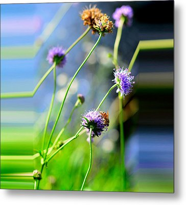 Flowers On Summer Meadow Metal Print by Tommytechno Sweden