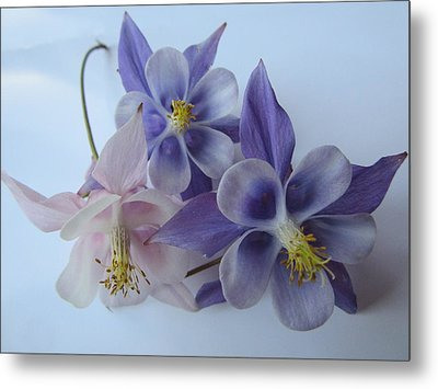 Flowers On White Metal Print
