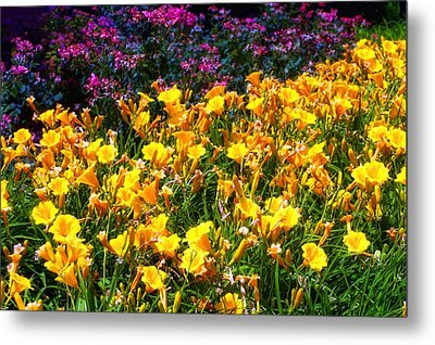 Metal Print featuring the photograph Flowers by Tim McCullough