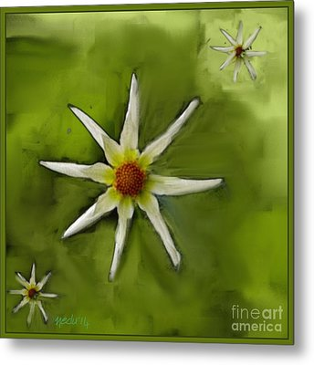 Flowers White Metal Print by Nedunseralathan R