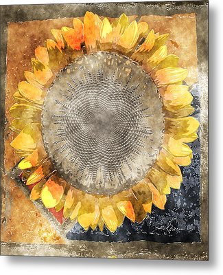 Flowersun - 09279gmn22b3a22 Metal Print by Variance Collections