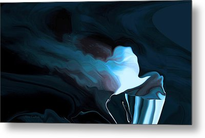 Flowing Hair Metal Print by Steve Godleski