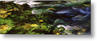 Flowing Stream, Blue Spring, Ozark Metal Print